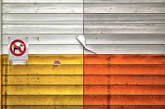 lui no (pamo67) Tags: pamo67 nothim divieto prohibition legno wood colori colors segnale signal cane dog avviso notice affissioni billboards linee lines pasqualemozzillo