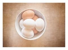 Farm Fresh And Free Range (Daniela 59) Tags: 7dwf 7dayswithflickr crazytuesdaytheme eggsactly eggs bowl table wood white brown food textures danielaruppel