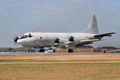 P-3C, 60+06 (WestwardPM) Tags: lockheed p3c orion 6006 germannavy rnasyeovilton