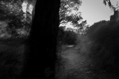 tank hill last light (Kenneth Rowe) Tags: tankhill2018icm x100ficm icm intentionalcameramovement blackandwhitelandscape monochromia