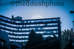 Kits photo walk (the8dushphoto) Tags: