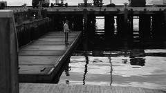DSC06946 (A Common Courtesy) Tags: a common courtesy wellington auckland new zealand camera photo bw color black white day night monochrome bokeh sony nex 5a nex5a focuspeaking minolta mc pg 50mm 14rokkor fotodiox adapter