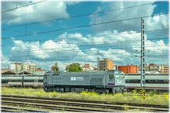 1900 en Valladolid-Campo Grande (440_502) Tags: 319 251 1900 grupo renfe operadora alquiler amf comsa rail transport caldero valladolid campo grande