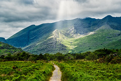 Killarney Sunburst (*Capture the Moment*) Tags: 2018 bäume clouds forest himmel holiday ireland irland june killarneynationalpark landschaften licht lichtstrahlen light lightbeam lumlook rayoflight sky sonne sonnenstrahlen sonya6300 sonye18200mmoss sonyilce6300 sun sunburst trees trip wald wetter wolken