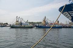 Vlaggetjesdag Stellendam 2018 (Stil Licht) Tags: stellendam vlaggetjesdag visserij visserschepen vissers vis fish fishingship fishing ouddorp goereeoverflakkee