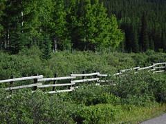 HFF Happy Fence Friday (davebloggs007) Tags: hff happy fence friday kananaskis alberta canada 2018 little elbow
