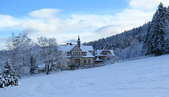 Zakopane-November'17 (74) (Silvia Inacio) Tags: zakopane poland polónia polska clouds nuvens snow neve tree árvore house casa nosal nosalmountain