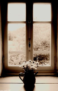 Un Si Joli Bouquet ...