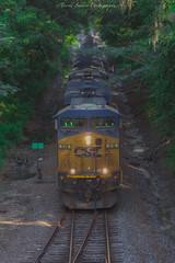 CSX T802 at Brooksville, FL 7-10-18 (tarellsallie) Tags: csx brooksville florida hernando hernandocounty july 2018 norfolksouthern unionpacific bnsf canadianpacific canadiannational ac4400 es44ac es44dc sd50 sd40 sd60 sd70 sd70mac sd70ace canon canont3i macbook edit lightroom copyright canopy train railroad railfan railfanning beautiful scenic headlight coal
