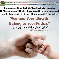 You-and-Your-Wealth (aamirnehal) Tags: quran hadees hadith seerat prophet jesus moses book aamir nehal love peace quotes allah muhammad islam zakat hajj flower gift sin virtue punish punishment teaching brotherhood parents respect equality knowledge verse day judgement muslim majah dawud iman deen about son daughter brother sister hadithabout quranabout islamabout riba toheed namaz roza islamic sayings dua supplications invoke tooba forgive forgiveness mother father pray prayer tableegh jihad recite scholar bukhari tirmadhi