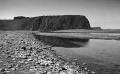 Whale Face Point _ bw (Joe Josephs: 3,166,284 views - thank you) Tags: beach bigsur california californiabeaches coastal coastline travel travelphotography westcoast califirnialandscape landscapes whaleshiking bw blackandwhite blackandwhitephotography monochrome