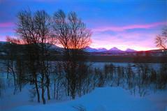 Fire in the sky too (kebman) Tags: nikon f75 135mm film senja norway winter vinter