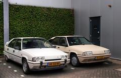 Citroën BX 19 GTi / 19 TRI (Skylark92) Tags: nederland netherlands holland flevoland almere xenonstraat 158 do citroen specialist service garage bxclub bollen bbq meeting car road wheel citroën bx 19 gti k6 1987 rk55nv tri u9 1989 xr10rd