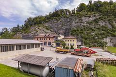 _17A4863 (Hallo Salzburg) Tags: 2018 adnet landsalzburg sommer steinbruch tennengau österreich