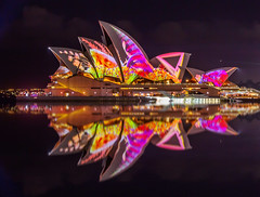 Pink on Black (Jared Beaney) Tags: canon6d canon australia photography photographer travel night sydney operahouse sydneyoperahouse vividsydney 2018 reflections reflection circularquay bright projectionshow projections colour newsouthwales