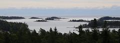 Overlooking Porkkala archipelago (liisatuulia) Tags: porkkala lähteelä sundsinlintutorni