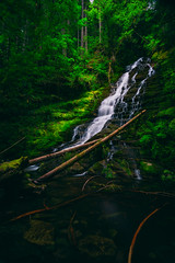 Lower Hopkins Creek Falls II (PNW-Photography) Tags: packwood randle washington pacificnorthwest northwest mountains mountain stream river creek cowlitz sony sonya6000 rokinon rokinon12mm landscape waterscape water waterfall waterfalls falls green forest trees tree rocks log