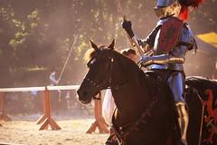 horse (Moyer566) Tags: sunny jouster jousting sirmauldron renfaire renfair bristol renaissance faire summer wisconsin travel explore adventure canon 50d corel paintprox5 photography