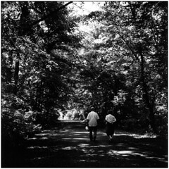 Walk of Life (Koprek) Tags: rolleiflex28f fomapan 100 may 2018 forrest 6x6 walk life
