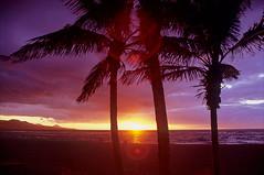 las palmas sunset (Ron Layters) Tags: sunset palmtrees beach playadelascanteras laspalmas sea ocean purple red yellow horizon grancanaria canaryislands islascanarias spain slidefilmthenscanned slide transparency fujichrome velvia leica r6 leicar6 ronlayters