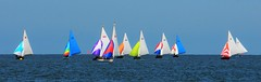 Wallasey Yacht Club RS 3 (sab89) Tags: sailing brighton river mersey estuary low water racing tide seabird tradional wooden boats boat sail new