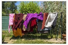 Vent (afantelin) Tags: vent air tissu couleurs yonne burgundy bourgogne suspendus été