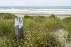 Texel (l-vandervegt) Tags: 2018 nikon d3200 nederland netherlands holland niederlande paysbas noordholland wadden waddeneiland texel dekoog duinen strand zee beach sea