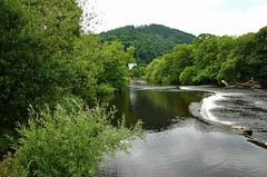 The River Dee (Eddie Crutchley) Tags: europe uk wales river llangollen nature beauty riverdee weir outdoor trees water simplysuperb landscape
