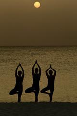 Beach Yoga, Turks & Caicos (Symbiosis) Tags: meditation yoga prayer spirituality womendoingyoga yogaonthebeach clubmed turksandcaicos clubmedturkoise sunsetyoga sunset sunsetmeditation fitnes fitness fitnessonthebeach women fitnesswomen silhouette namaste zen