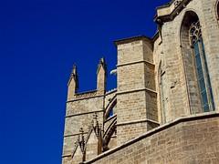 Catedral de Mallorca, Panorama - Palma de Mallorca (André-DD) Tags: palma palmademallorca catedraldemallorca mallorca majorca spain spanien espania kirche church himmel public stadt city capital balearen baleares sky