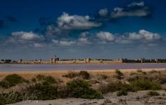 Aigues-Morte (DJNstudios) Tags: aigues morte salin fleur sol france french chateau walled city salt flamingo