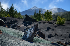 Volcanic rock (Rico the noob) Tags: 2018 rock d850 landscape nature 58mmf14 mountains outdoor 58mm stones clouds trees tree forest published dof sky tenerife teneriffa bokeh rocks mountain