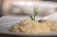 DSC06249 (iari fotografia - (Travèt)) Tags: food photography cibo ristorante restaurant viareggio beauty helios mir 1b vintage lenses bokeh