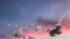 the moon and the dog (m_big_b) Tags: moon eveningsky cloud dog 7dwf