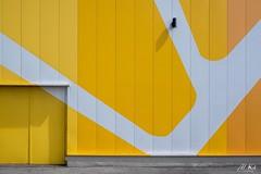 Dunkerque_0618-23-2 (Mich.Ka) Tags: dunkerque abstract abstrait architecture bâtiment bâtimentindustriel door façade graphic graphique hautsdefrance industrialdesign jaune ligne line magasin mur nord nordpasdecalais orange porte yellow zoneindustrielle