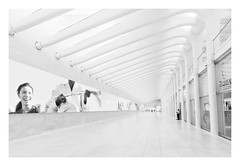 Guardian II (bprice0715) Tags: canon canoneos5dmarkiii canon5dmarkiii architecture architecturephotography blackandwhite blackwhite bw monochrome mono highkey white oculusstation theoculus oculus nyc newyorkcity ny city fineart curves shapes patterns