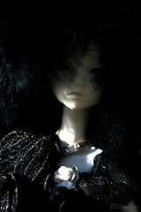 """Lenore"" in the garden (Mittebam) Tags: bjd raven lenore dollchateau doll bella"