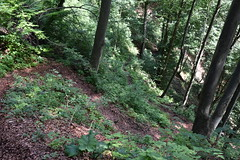 DSC_1824 (gregorv) Tags: slovenia slovenija kum planine mountains mountain nature narava
