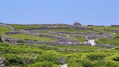 Stone maze (Astaken) Tags: olympus omd em5 43 lens zuiko digital zd ed swd 1260mm