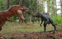 T-Rex and Spinosaurus face off (rodstoybox) Tags: dinosaur dinosaurs spinosaurus trex jurassicpark jurassicworld jurassic fallenkingdom lostworld mattel toys rex