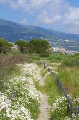 612 - Bastia au bord de la lagune (paspog) Tags: bastia corse lagune corsica france mai may 2018