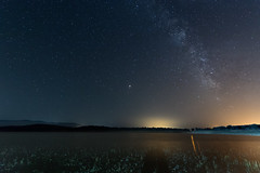Via Lactea sobre el Gabriel y Galan (Eduardo Estéllez) Tags: gabrielygalan water shore swamp reservoir lake milkyway night sky forest stars star background galaxy space over nature landscape travel silhouette outdoor nighttime universe astrophotography astronomy granadilla extremadura spain caceres beautiful dark beauty summer starry light natural colorful bright outer black blue cosmos nebula scene science vialactea estellez eduardoestellez