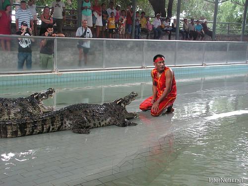В пащу крокодилу Паттайя Таїланд Thailand InterNetri 43