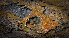 Rock Face Abstract - Missoula, MT (j-rye) Tags: sonyalpha sonya6000 sony a6000 ilce6000 mirrorless missoula montana rattlesnake recreation wilderness hike lkg974