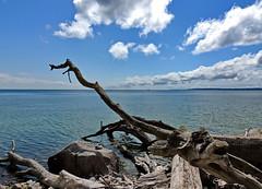 Ostsee impression (Wunderlich, Olga) Tags: ostsee rügen insel mecklenburgvorpommern sassnitz strand sand steine wolken blau landschaftsbild nautrkreativ