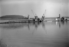 Belfast Docks 24062018 - 014 (irishlad031_vintage) Tags: belfast browniecamera blackwhite boxbrownie ulster ulsterisirish irishlad031vintage irishlad031 irish ireland film vintagephotography cityscape coantrim docks titanicquarter