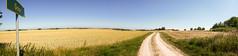 Goor Richtung Kap Arkona (Corno3) Tags: wittow kaparkona goor ostsee urlaub feld weg sommer panorama sonne natur rügen putgarten mecklenburgvorpommern deutschland de