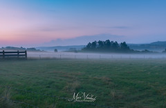 moments before sunrise (fire111) Tags: sunrise ardennes ardennen mist fog zonsopgang nature green