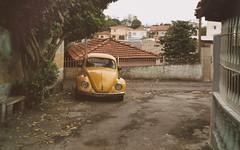 The last one. I promise! (Diego3336) Tags: vw volkswagen beetle bug escarabajo fusca sedan car old classic vintage vehicle dailydriver aircooled urban street curbside 70s 1970s clicksp streetshot streetphoto filter nik saopaulo sp brasil brazil latinamerica southamerica cameraphone 2018