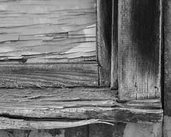 IMGP2999 (agianelo) Tags: weathered rough decay urban splintered monochrome bw blackandwhite bn